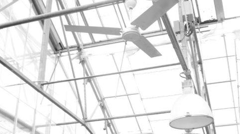 Über das Verhalten von Aerosolen in der Luft