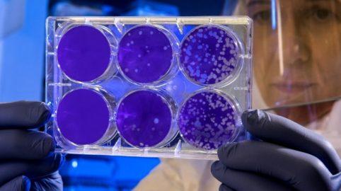 Antimikrobielle Technologie für Flächendesinfektion